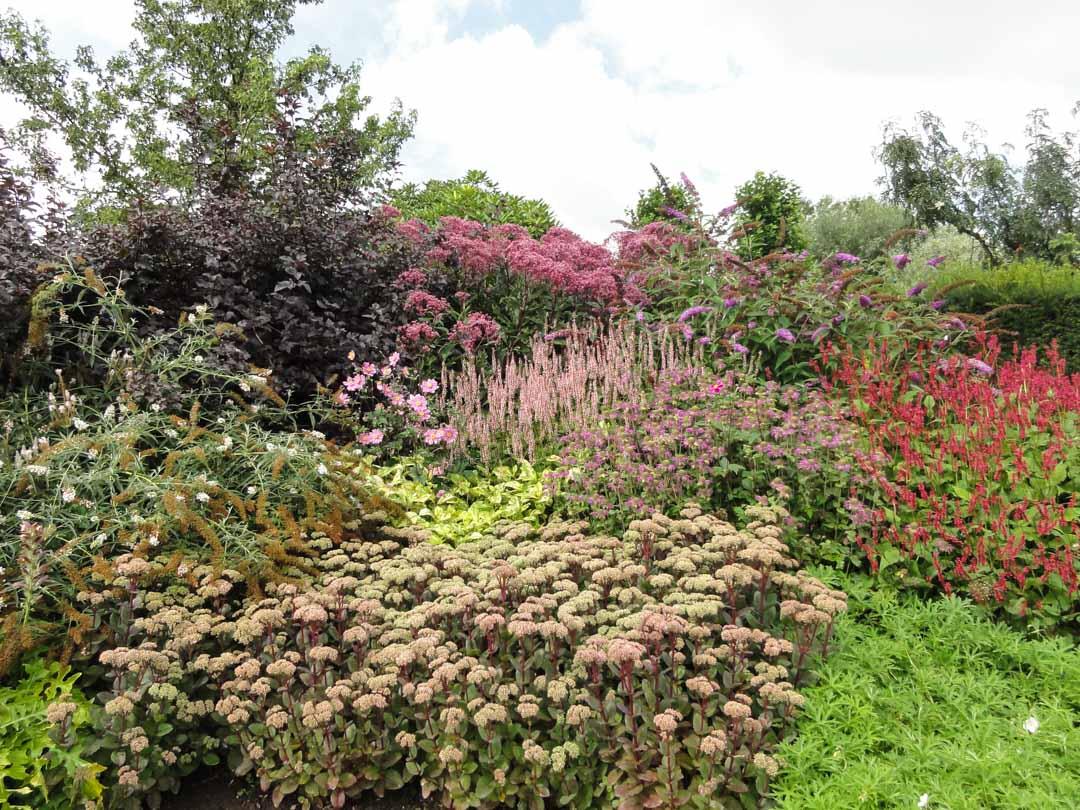 Tipps ber die verwendung der pflanzen in der for Gartengestaltung tipps